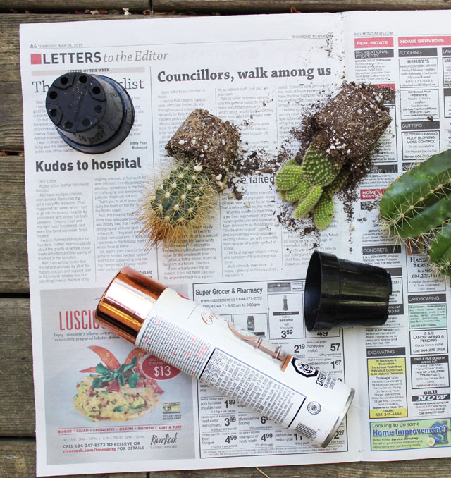 5 Minute DIY   Copper Planter Pots