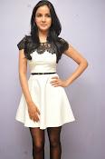 Jasmine Basin glam pics at Veeta Platinum disk-thumbnail-14