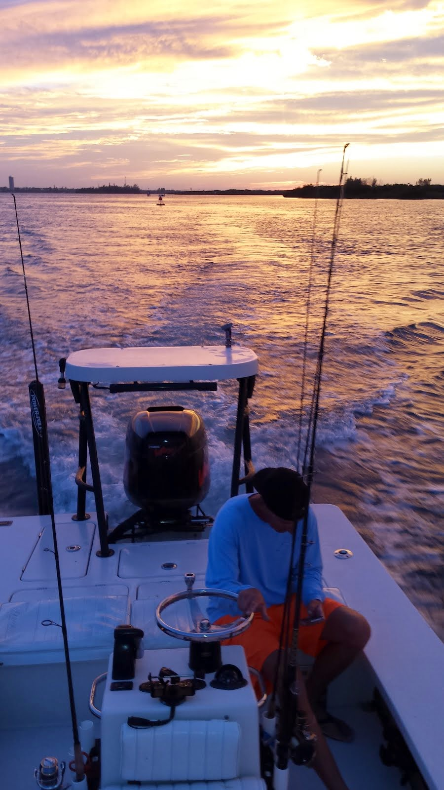 Evening Tarpon