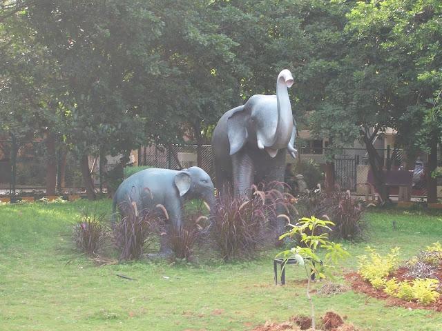 Elephants in Rastra Kavi Kuvempur Park