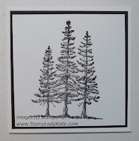 Card made with Stampin'UP! stamp set called: Plant Hope. Made by StampLadyKatie