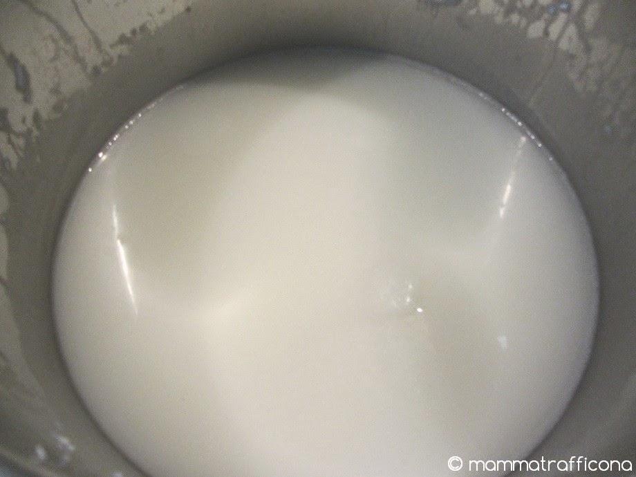liquido marsiglia lavatrice fai da te