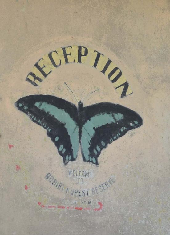 Bobiri Forest Butterfly Sanctuary Reception
