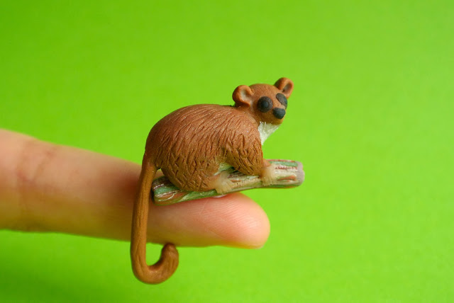 Madame Berthe's mouse lemur by  The Little Creatures