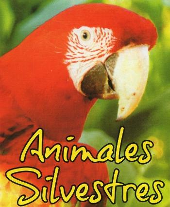 los animales silvestres y como los estamos esterminando