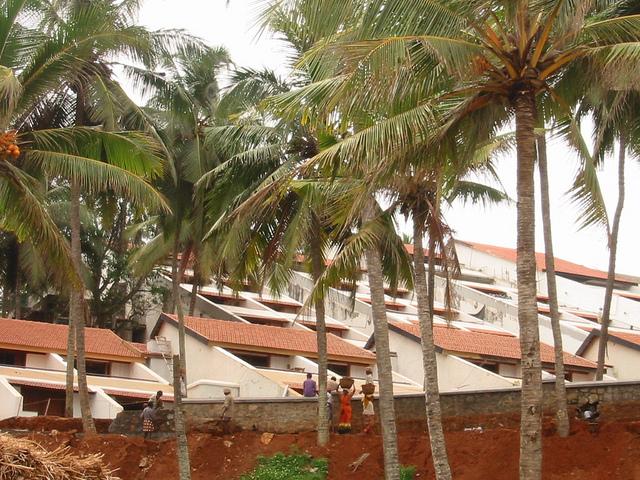 Hotels in Kovalam Kerala. Book Hotels and resort in Kovalam