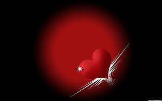 Love Like Bird