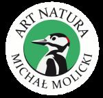 PTAKI Z DREWNA - MICHAŁ MOLICKI ART NATURA