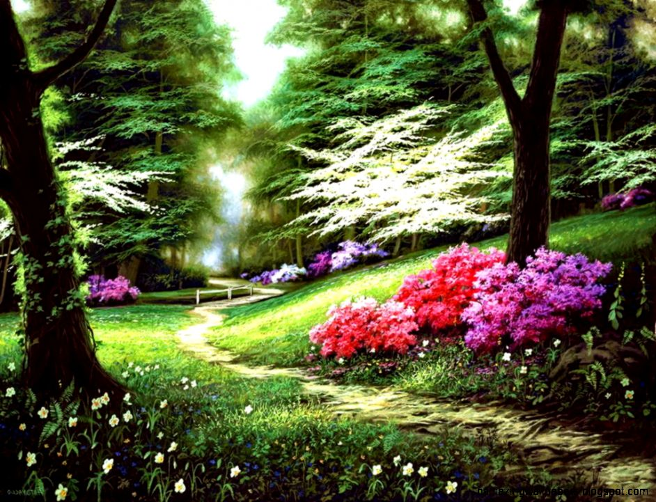 Beautiful Spring Forest Wallpaper  Hd Wallpapers