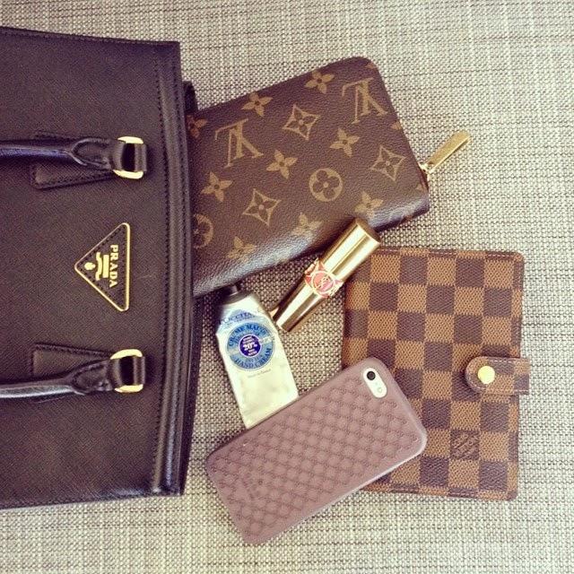 JANUARYS CLOSET ?: Whats in my Bag: Mini Essentials