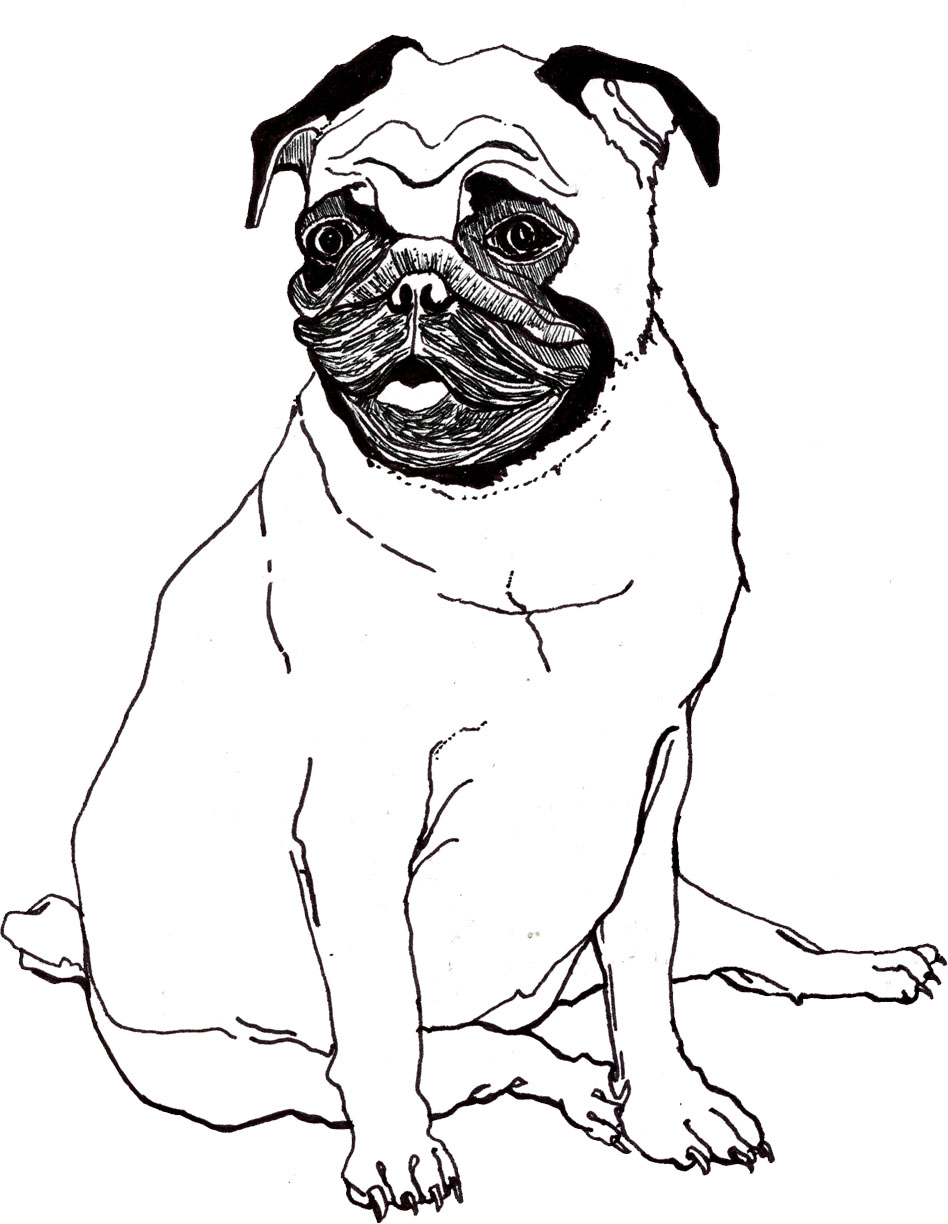 pug coloring pages - photo#18