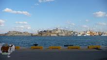 Quatchi in Malta