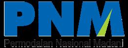 Logo PT PNM