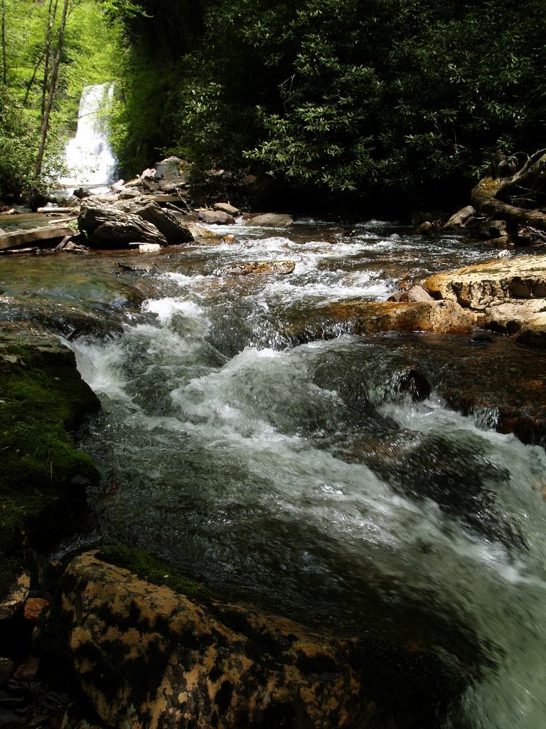 Open Air and Sunshine: Cascades Trail - a quintessential