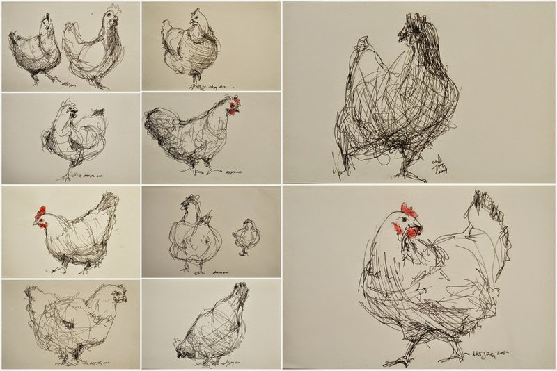 sketch, etsy shop, chicken, art