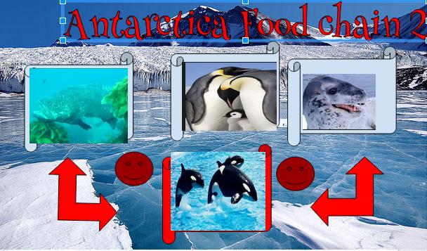 Johnlee antarctica food chain 2 for Antarctica cuisine