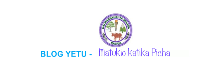 KALIUA DISTRICT COUNCIL