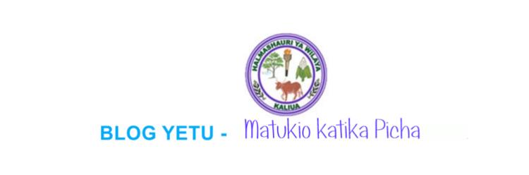 KALIUA DISTRICT COUNCIL