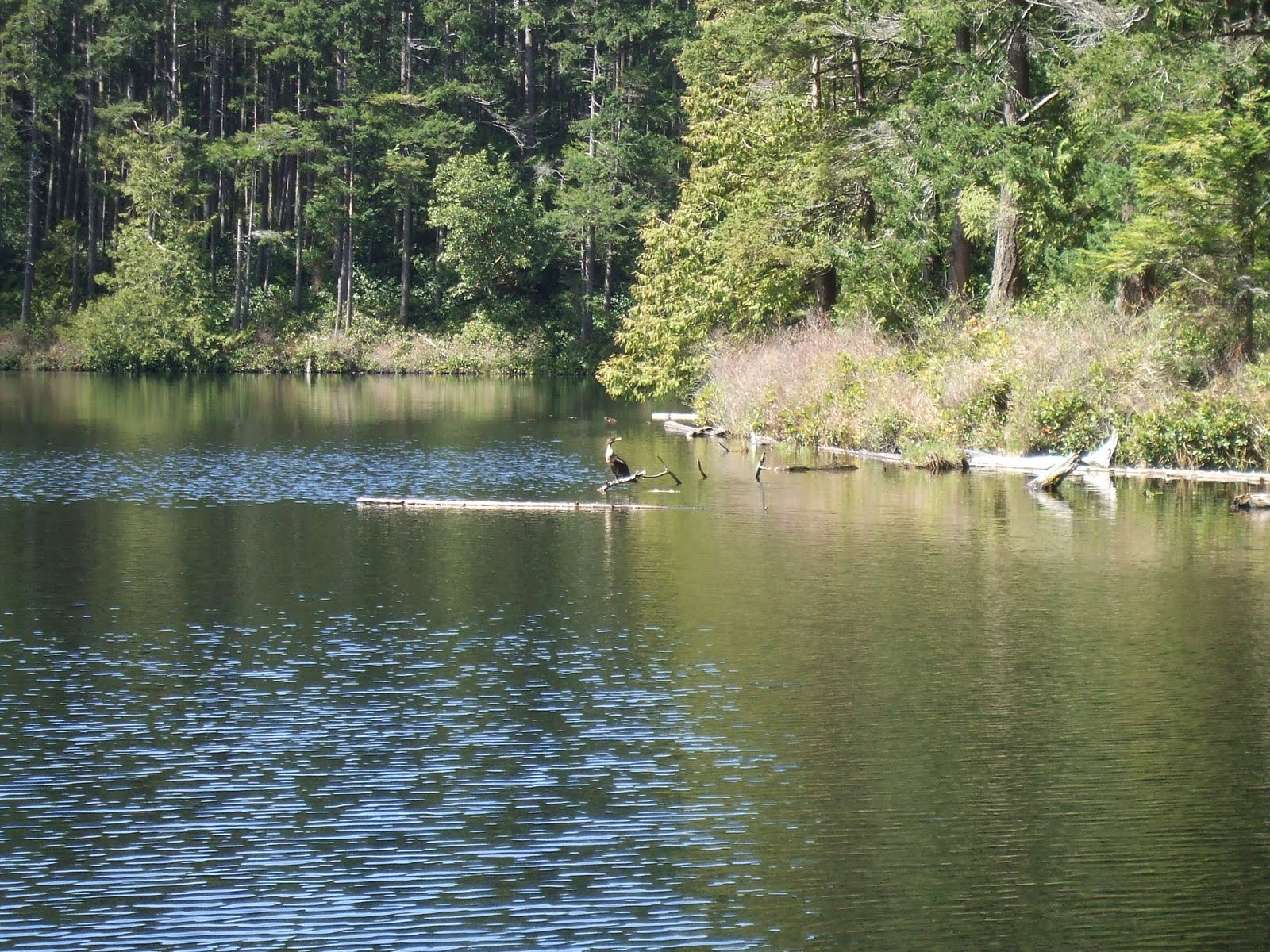 cranberry lake single parents Hiking cranberry lake campground offers a great base for hiking the numerous trails in the area two foot trails leave the campground the 24 mile bear mountain trail is a loop trail which offers a challenging climb and scenic vistas to the novice hiker.