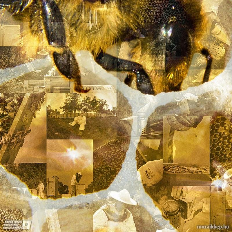 Hajdú Ervin Ottó - Méhecskés mozaik (részlet)