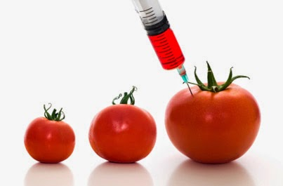 GMO Food: What it is and What are its Effects