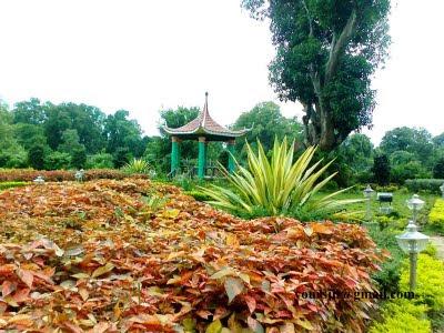 Dantewada Park