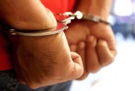 Prosedur penangkapan