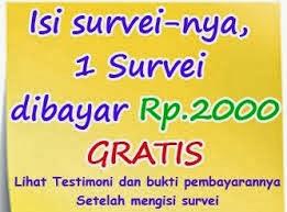 http://www.idsurvei.com/survei/bayyz/