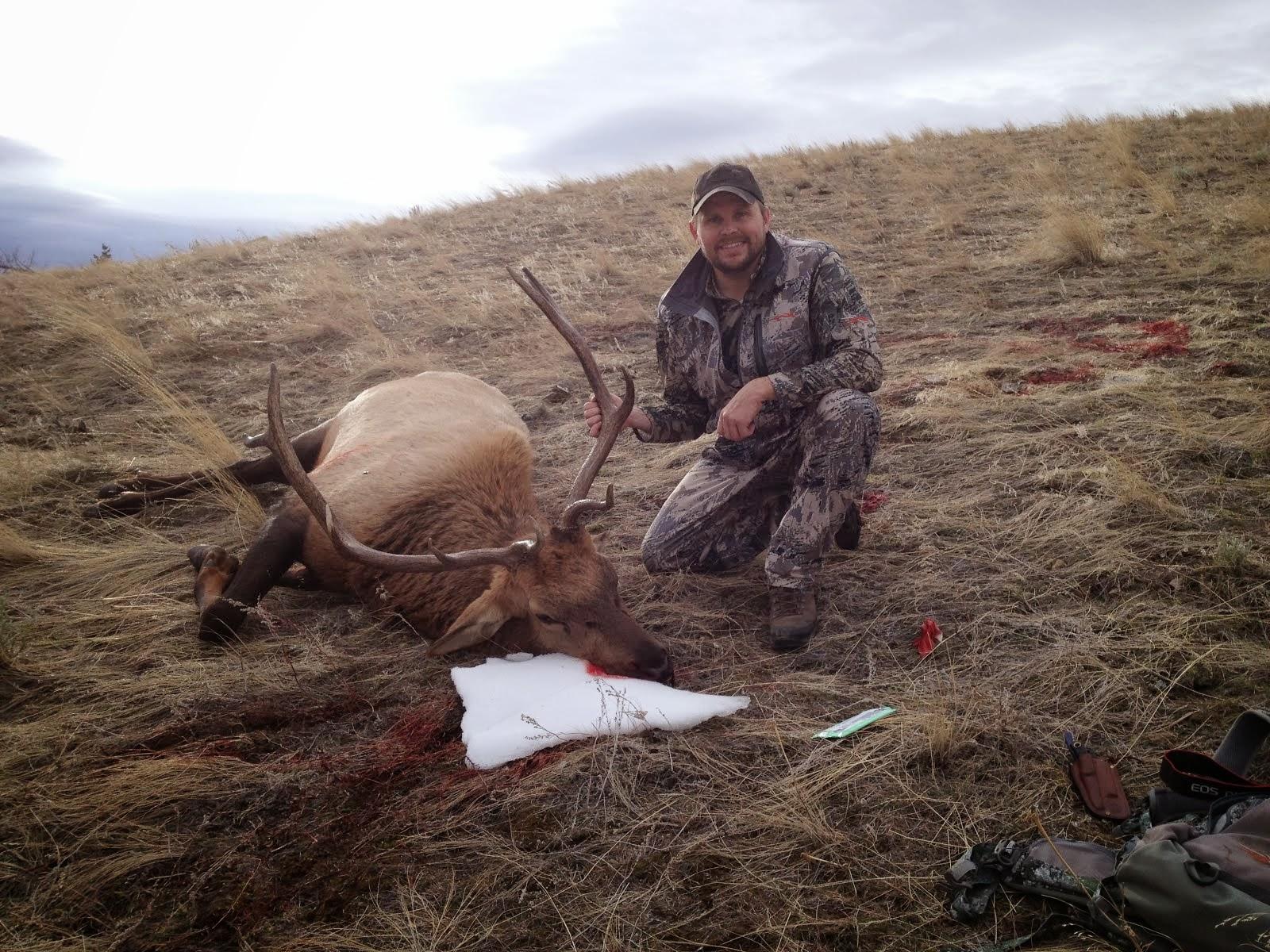2013 Montana Elk