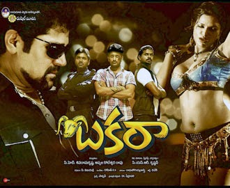 Bakara Telugu Movie Watch Online