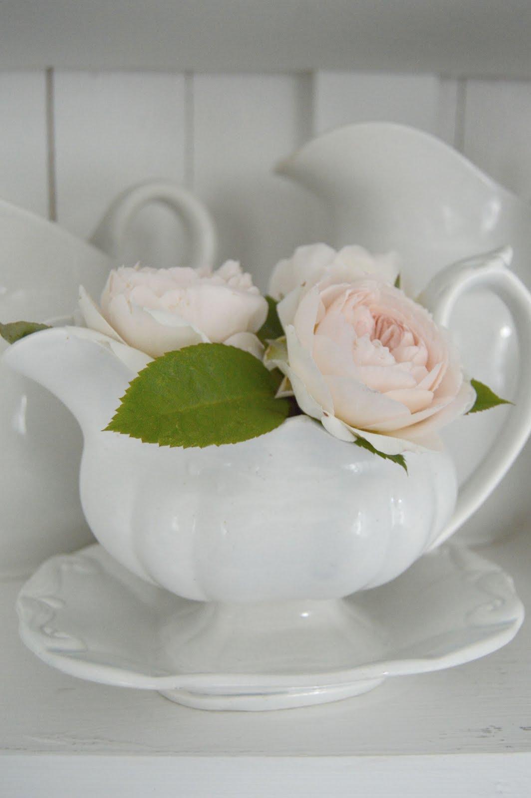 Jag älskar rosor!