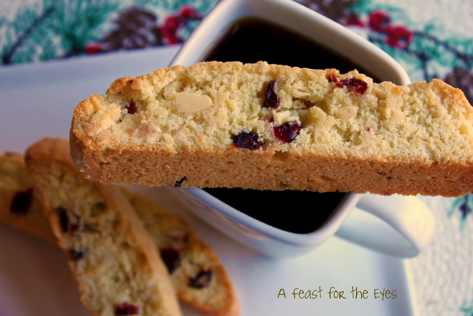Feast for the Eyes: Cranberry-Almond Biscotti