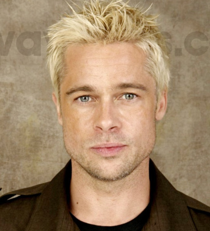 Tales Of A 20 Something Sub Defective Things Brad Pitt S