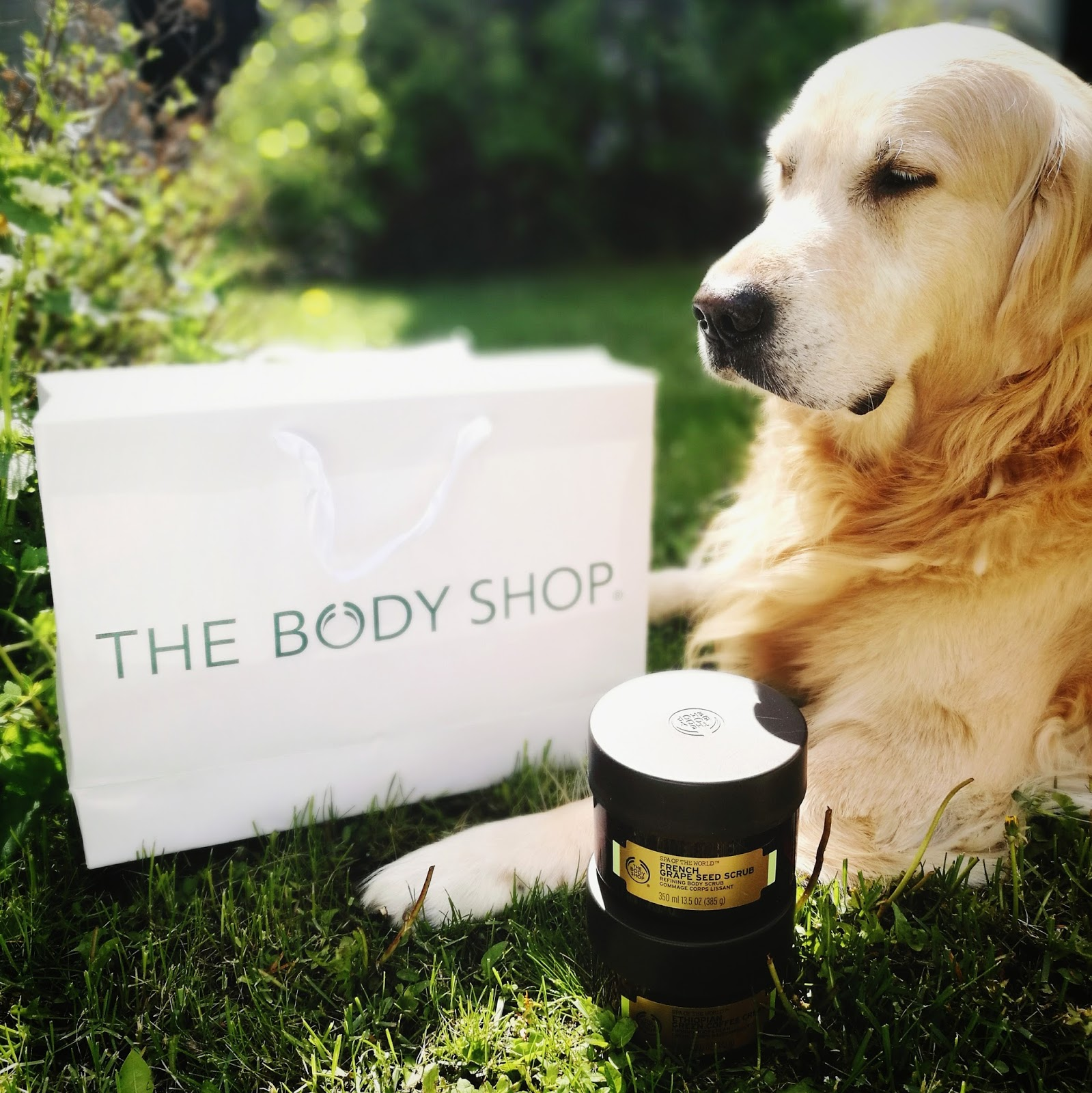Body Shop klik