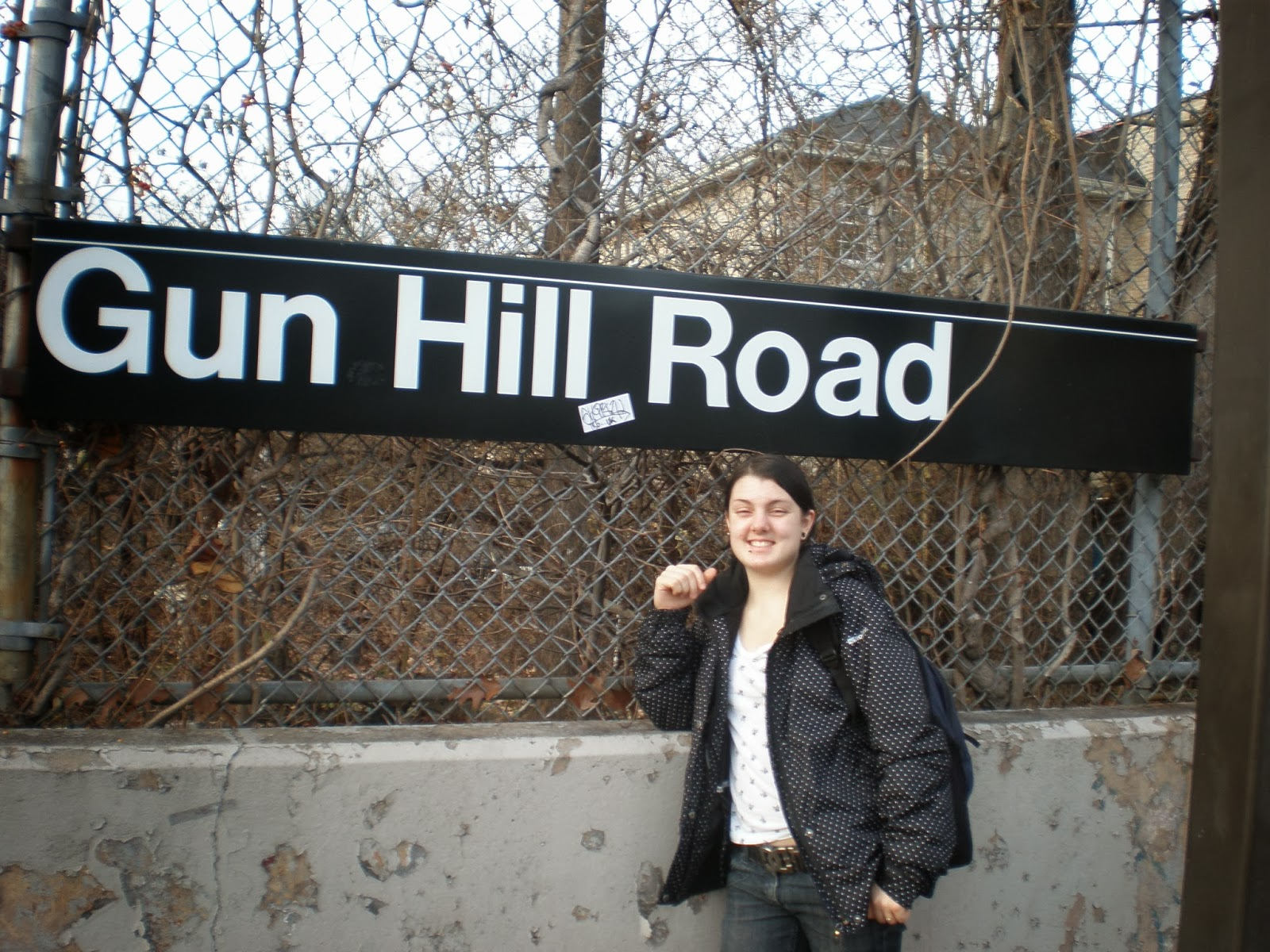 bronx, gun hill road, subway,NYC, New York, 10 free things to do, free things to do in NYC, travel, New York, explore, adventures, photography, usa, tourism, tourists,