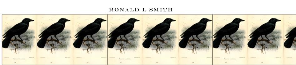 Ronald L Smith