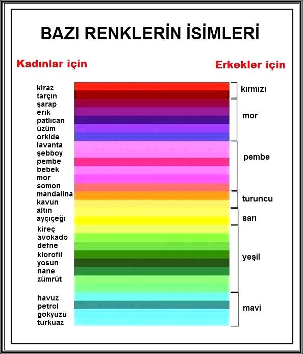 Ehil Kalem Renklerin Isimleri