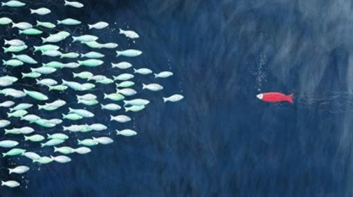 El rumor de los bosques contra la corriente for Nadar contra la corriente