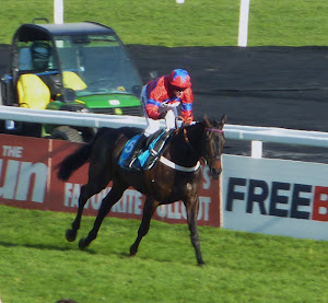 The brilliant Sprinter Sacre