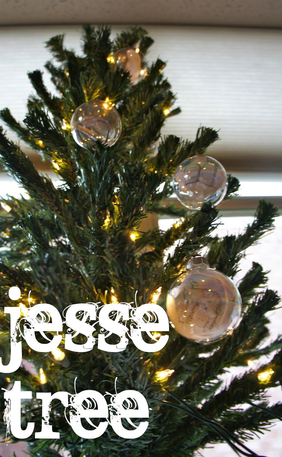 my owlet  our jesse tree