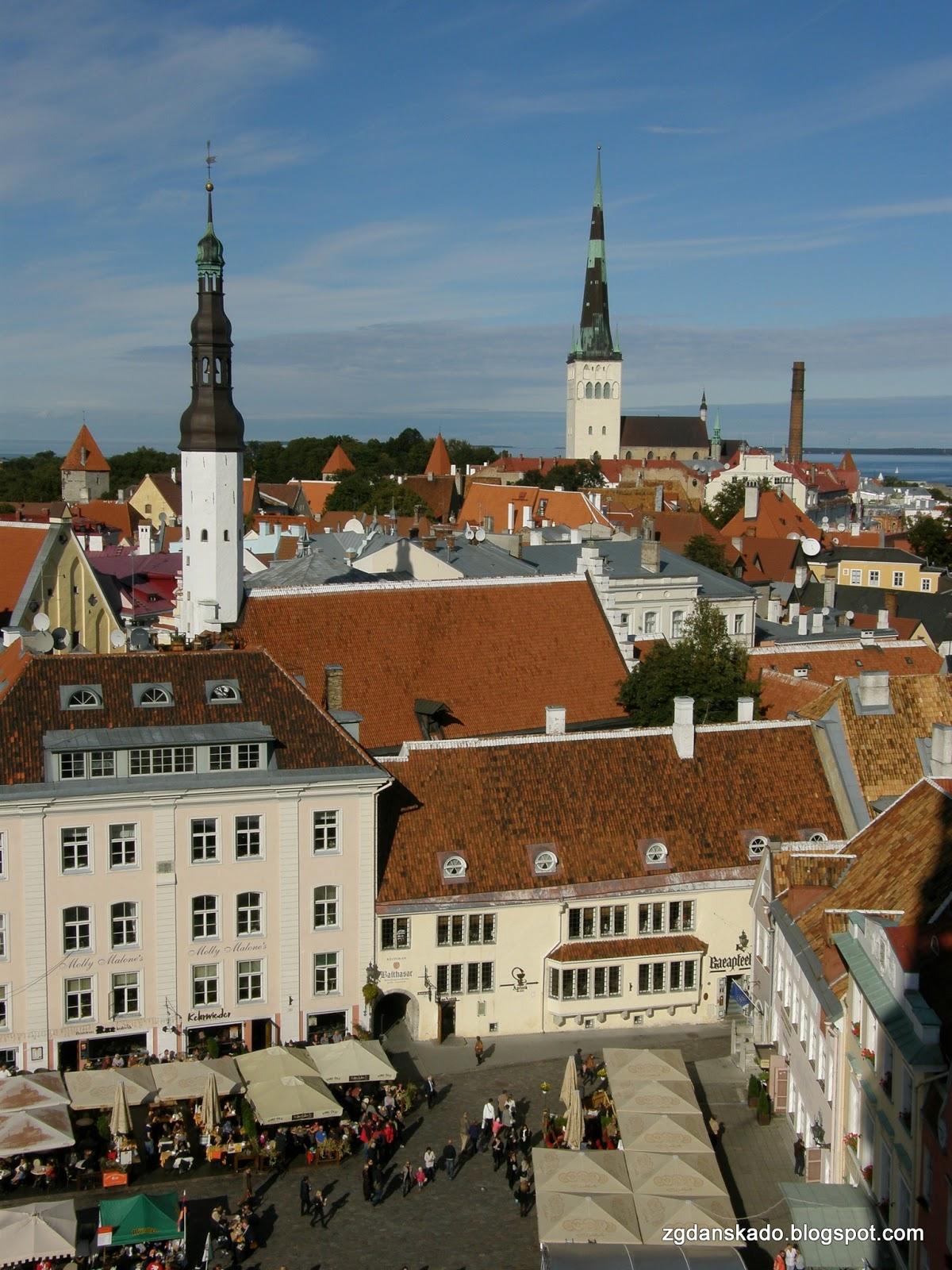 Tallinn - widok z wieży ratuszowej