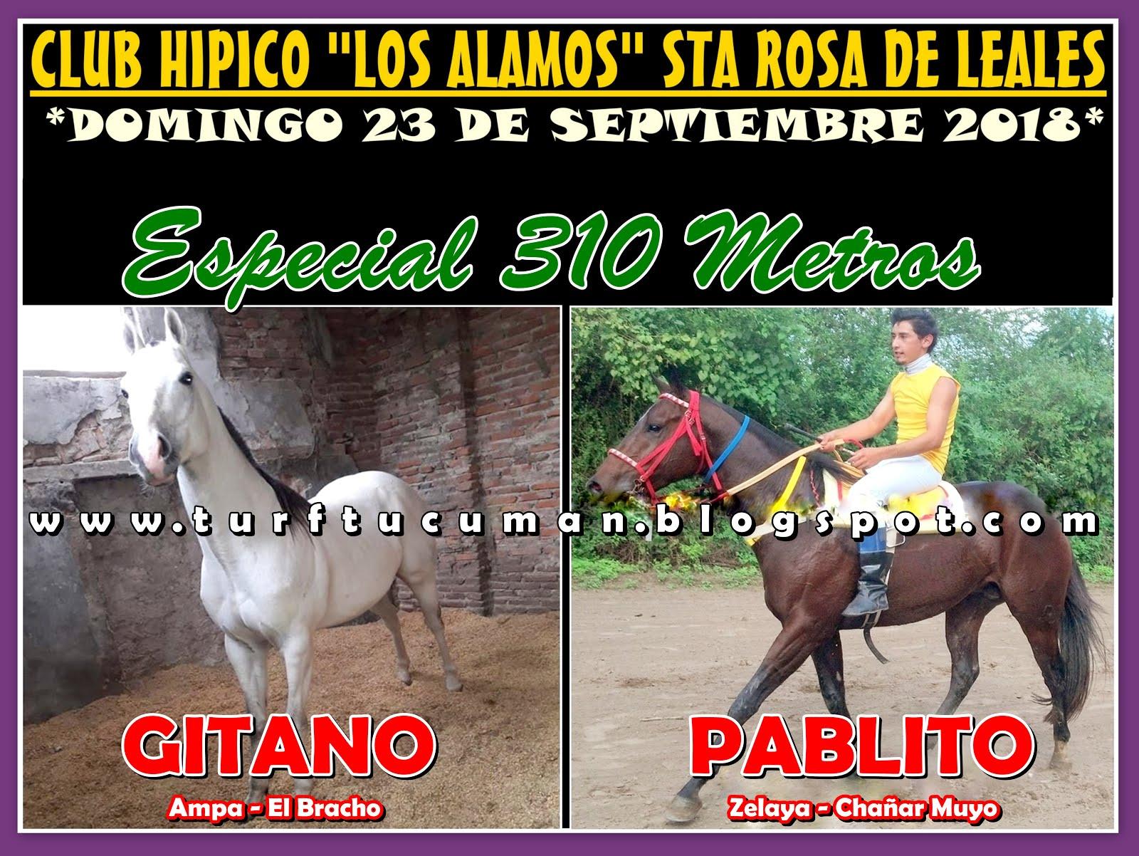 GITANO VS PABLO