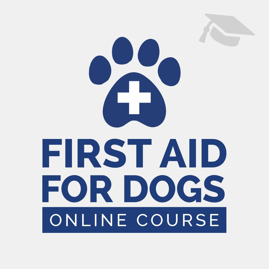 The Only Online Dog First Aid Course That We Recommend