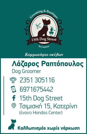 15th Dog Street