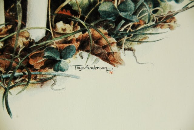 Tage Andersen