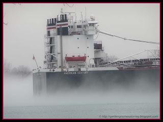 freighter in morning fog