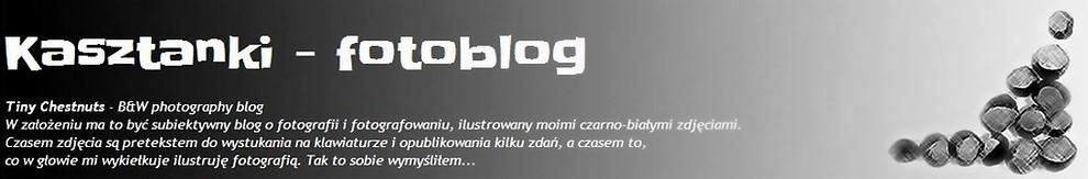 Kasztanki - fotoblog