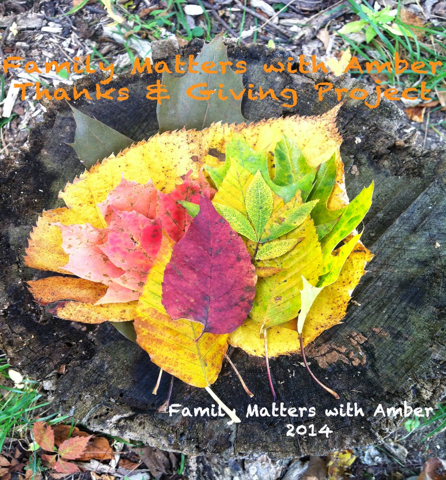 Family Matters with Amber Thanks Giving Gratitude Project