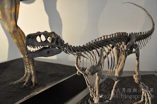 地球最古老的恐龍展