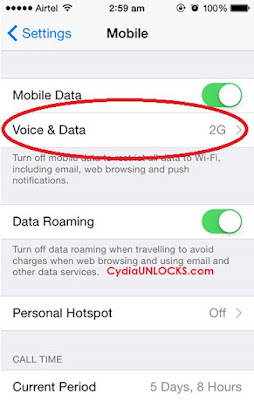 Voice & Data Option iPhone